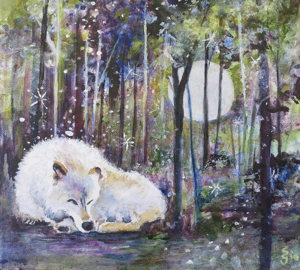 Wolf in the Woods2